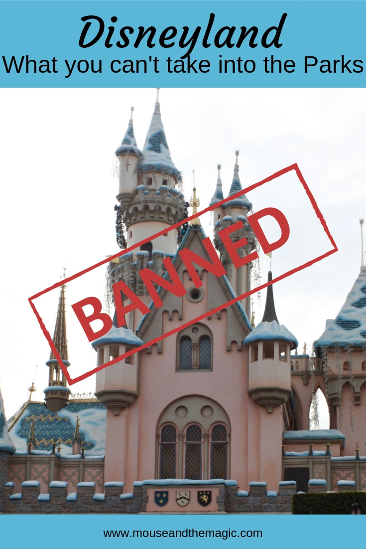 Banned at Disneyland- What You Can't Take into the Parks