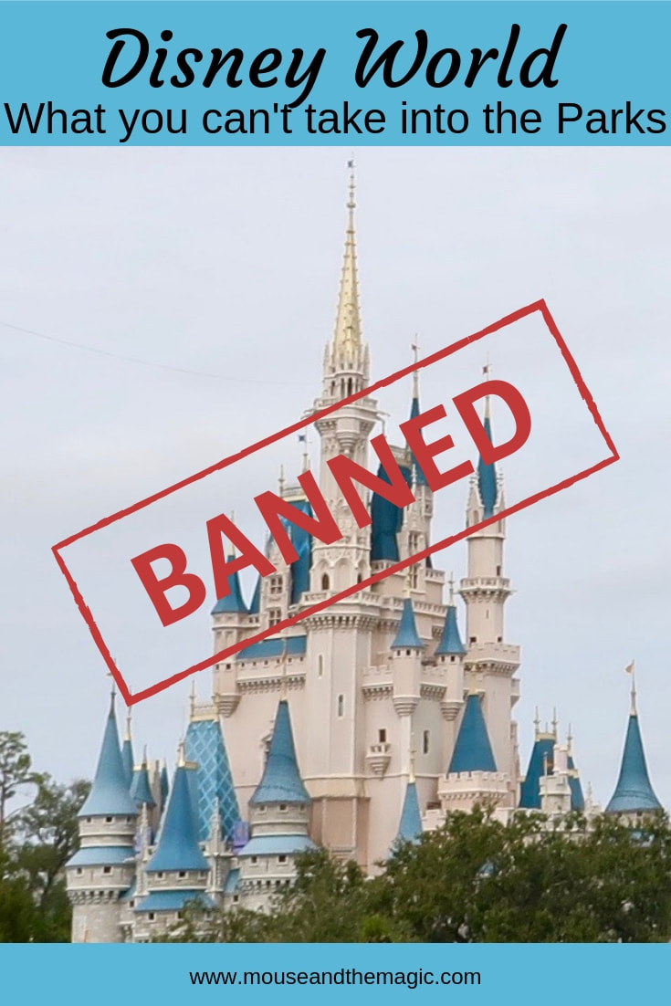 Banned at Disney World - What You Can't Take into the Parks