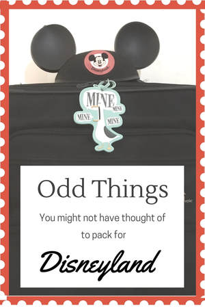 Odd things that you may not have thought to pack for your Disneyland Vacation