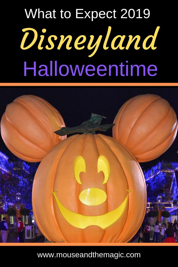 What to Expect 2019 - Disneyland at Halloweentime