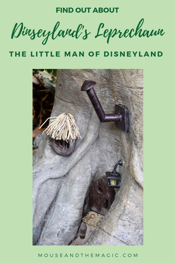 Disneyland's Leprechaun - the Little Man of Disneyland