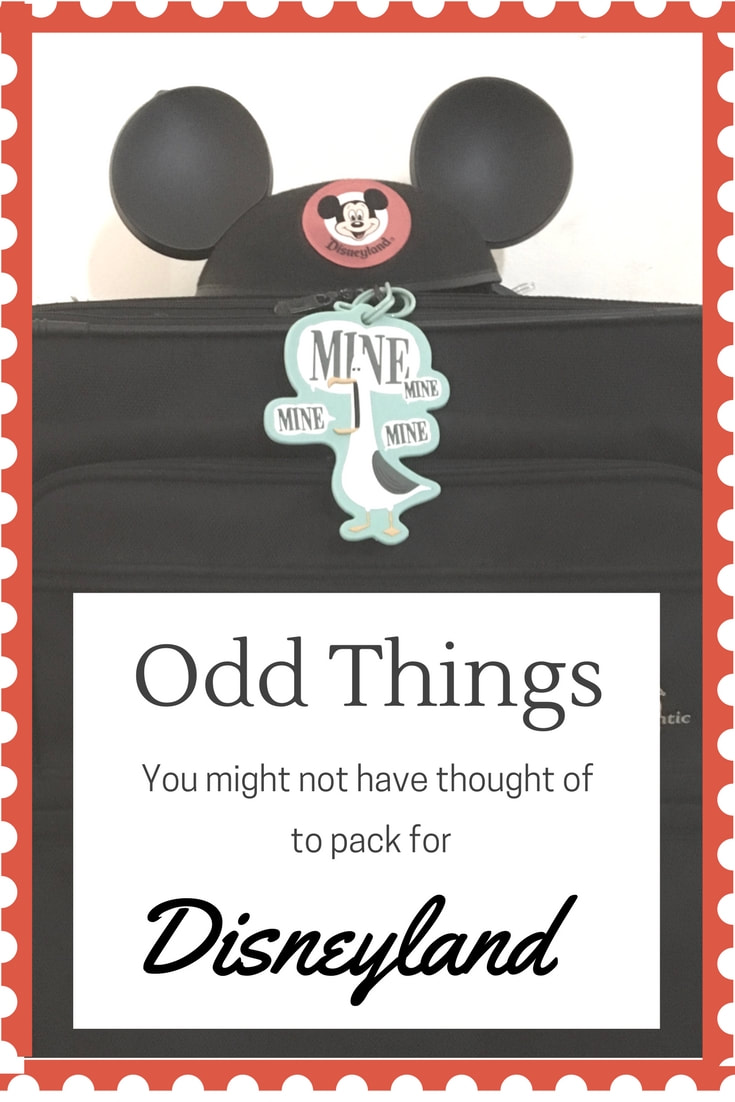 Odd Things to Pack for Your Disneyland Vacation